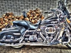 Harley Davidson Road King RayZ Buddyseat Motorzadel