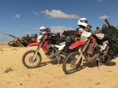 Buddyseat Motorzadel RayZ seat in Libya
