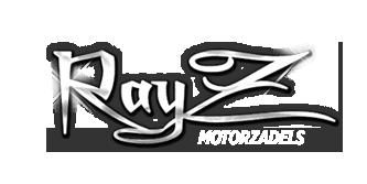 Buddyseat, Motorzadel, Rayz, motorzadel op maat,BMW zadel, Harley Davidson zadel